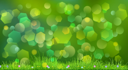 sky grass: Spring background in green colors with sky, grass and flowers