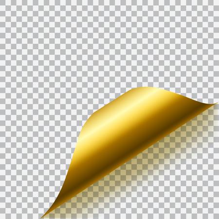 angolo di carta arricciato con ombra su sfondo trasparente. La trasparenza solo in formato vettoriale