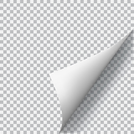 Curled corner of paper with shadow on transparent background. Transparency only in vector format Vettoriali