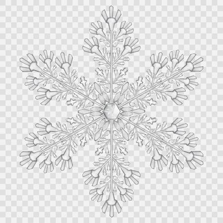 Big doorschijnend kristal sneeuwvlok in grijze kleuren op transparante achtergrond. Transparantie alleen in vector-bestand