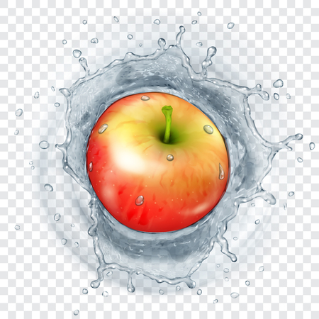 Red apple falling into transparent water with translucent splash. Transparency only in vector format