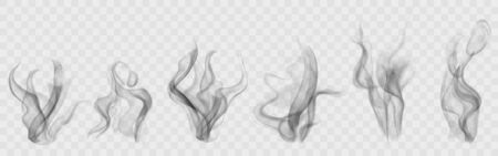 Set of realistic transparent smoke or steam in white and gray colors, for use on light