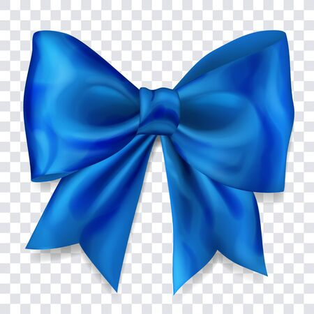Beautiful big bow made of blue ribbon with shadow on transparent background Çizim