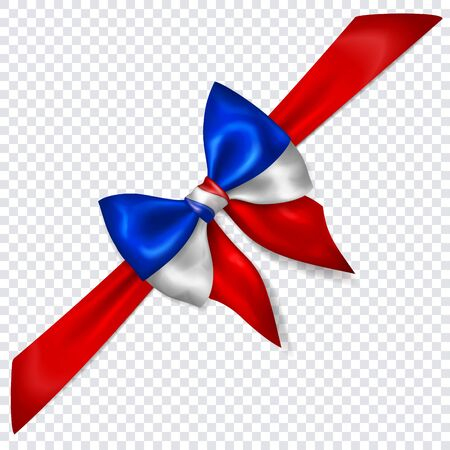 Beautiful bow in colors of France flag with diagonally ribbon with shadow on transparent background. Transparency only in vector format