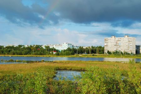 Provincial town on a bog photo