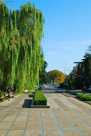 parkway: Parkway in resort city.  Stock Photo
