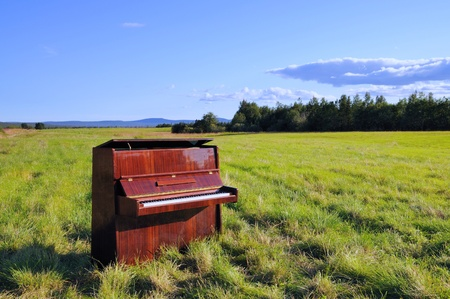 The old wooden piano outdoors  Summer landscape