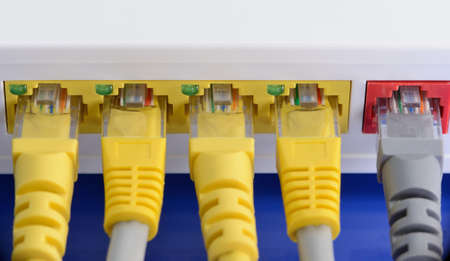 Several RJ45 LAN cables connected to router formed communication network.