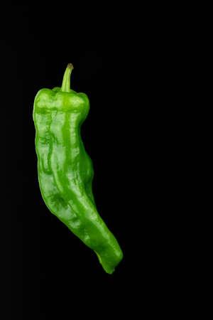 One green green pepper on black background Banco de Imagens