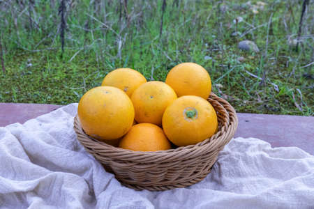 Fresh orange in the fruit basket