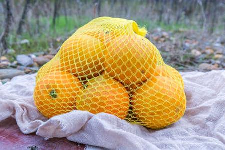 Fresh  orange in net bag
