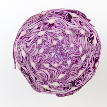 Close up of a red cabbage sliced in half