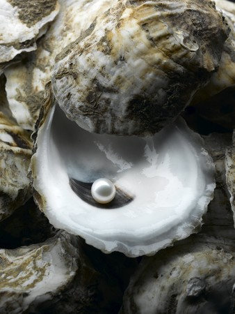 oyster shell: A shiny pearl in an oyster shell Stock Photo