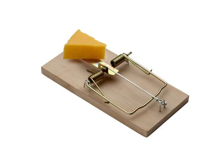 mouse trap: Mouse trap with cheese waiting for a mouse