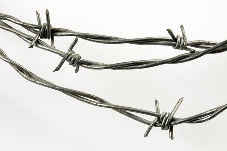 wire fence: Close-up shot of barbed wire shot on white background