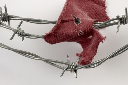 Piece of a shirt caught on barbed wire, shot with soft shadow Stock Photo - 6832148