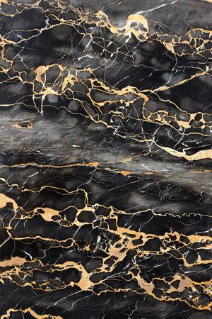lajas: M�rmol gris y negro oscuro con marco de relleno de las venas de oro
