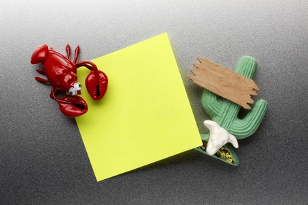 Lobster and cactus refrigerator magnet hold blank piece of paper to stainless steel refrigerator door 版權商用圖片