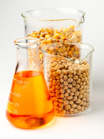 beaker of golden ethanol and flasks filled with corn and soybeans shot in lab on white background with soft shadow Archivio Fotografico