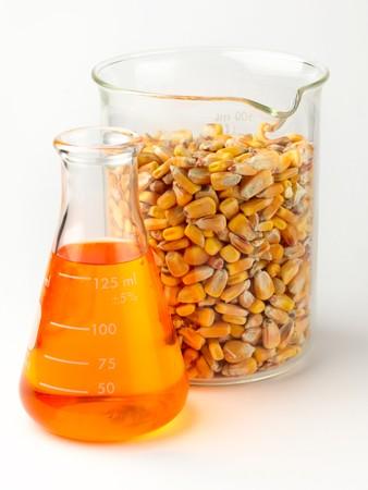matraz de etanol oro y vaso lleno de maíz en laboratorio sobre fondo blanco con sombra suave Foto de archivo