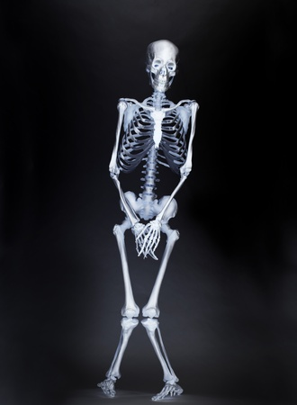 Body scan at airport reveals the anatomy of a traveler Stock Photo - 8651426