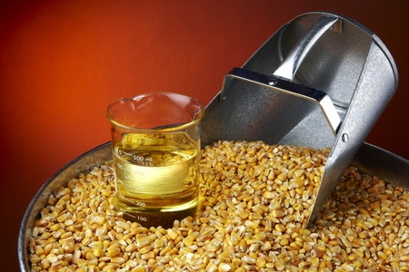 Still life shot of corn, feed scoop and beaker of biofuel with space for copy