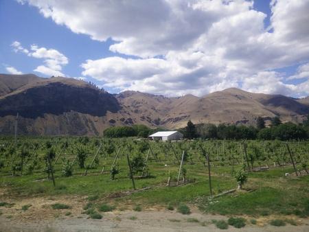 Vista Paisaje en una zona rural Foto de archivo - 44367153