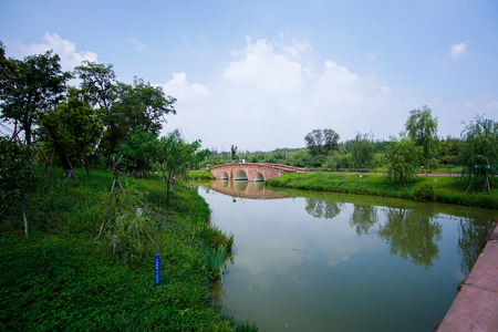 wetland: Wetland Park