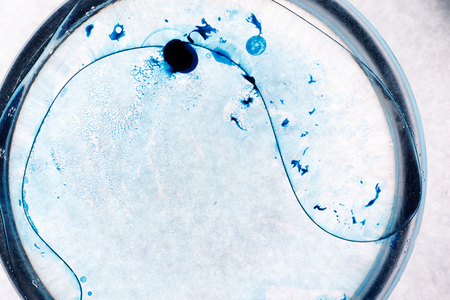 Blue spots on white background. Abstract picture