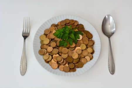 eatable: Money as food, money versus food, money is rather raw food, money is not eatable even with spices.