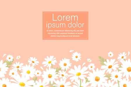 Vector pattern illusration white daisy flowers on a pink background. EPS10.