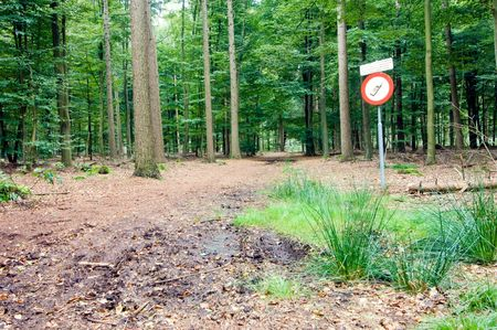 clearing the path: A sign in the woods near a radio telescope, forbidding the use of cell phones, mobile phones and other transmitting equipment.