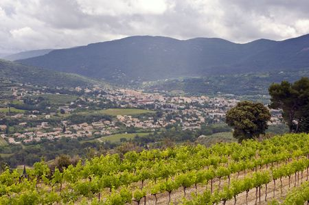 The city of Nyons, wedged in the vally between the famous Cote du Rhone vineyards photo