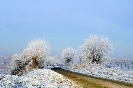 archetypal: A rural road on a dutch dike, just before the break of dawn on a winter morning