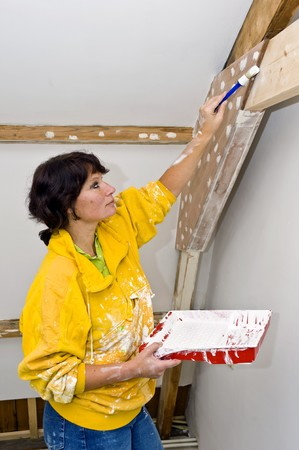 restoring: A woman painting a newly restored room Stock Photo
