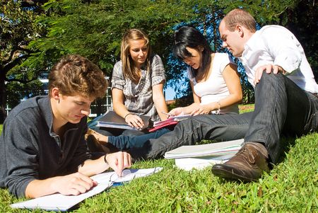 Four university students comparing their notes from college, sitting in the park on a beautiful day photo