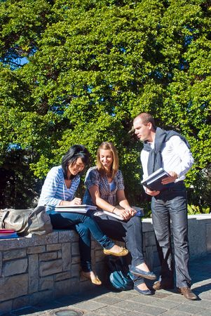 Three students comparing notes in a university park on a beautiful sunny day photo