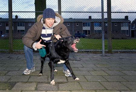 juvenile delinquent: An aggressive dog, being set loose by his vicious owner in an suburbian area Stock Photo