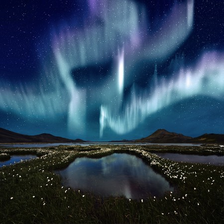 the aurora: The Northern Light over the marsh landscape with wildflowers in Landmannarlaugar, Iceland Stock Photo