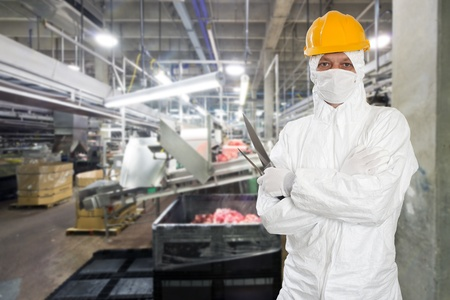 Industrial butcher posing with two filleting knives, wearing protective and hygienic clothing, such as a white suit, mouth piece or mask and a yellow hard hat, in front of a large animal processing plant Stok Fotoğraf