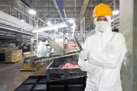 Industrielle Metzger posiert mit zwei Filetiermesser, trägt Schutz-und Hygienemaßnahmen Kleidung, wie einem weißen Anzug, Mundstück oder Maske und einem gelben harten Hut, vor einem großen Tier Verarbeitungsanlage Standard-Bild