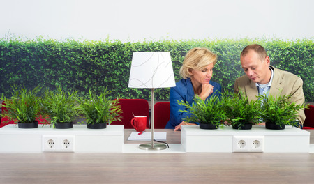 environmentalists: Male and female environmentalists working at desk in office