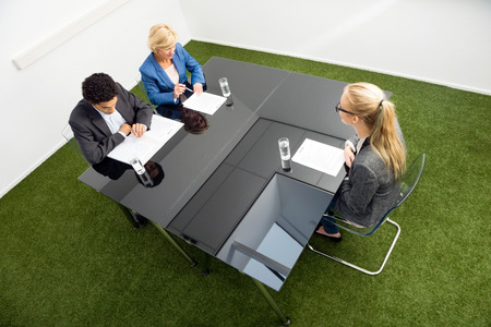 environmentalists: High angle view of environmentalists sitting at desk in office during a job interview.
