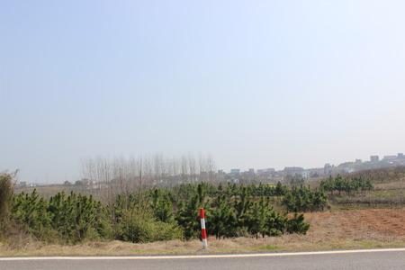 roadway: landscape beside roadway