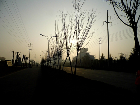road side: road side view