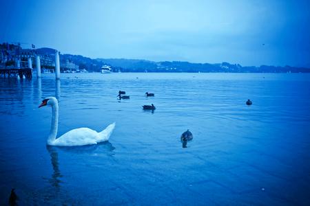 lucerne: Switzerland Lucerne Stock Photo