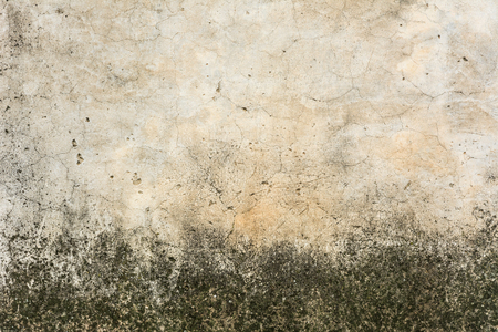 Background: weathered exterior wall Banque d'images