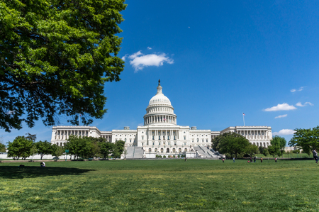 US Capitol with surrounding park in summer Imagens
