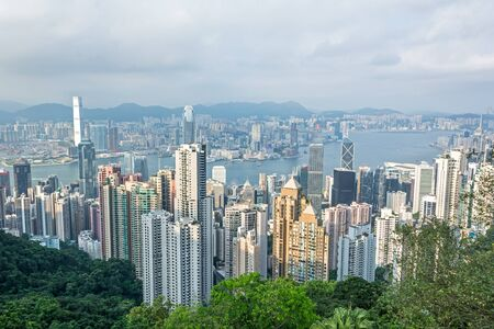Skyline of Hong Kong with green trees in the foreground Фото со стока