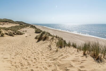 Hiking trail in beautiful dune landscape with beach and ocean in the background on the island of Sylt, Germany